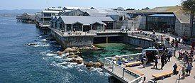 MontereyBayAquariumBackview (cropped).jpg