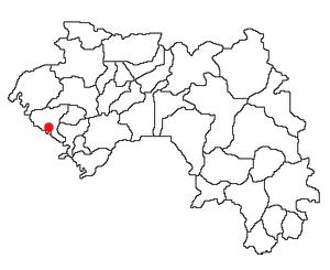 GN-Boffa.png