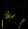 FLII Kenya.png