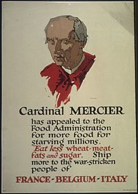 """""""Cardinal Mercier has appealed to the Food Administration for more food for starving millions. Eat less wheat- meat... - NARA - 512580.jpg"""