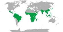 Range of Non-human Primates.png