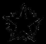Indian Election Symbol Star.png