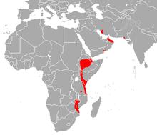 Persian Trident Bat area.png