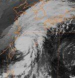 Typhoon Yanni 1998.jpeg