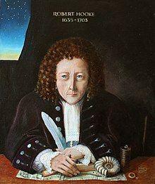 13 Portrait of Robert Hooke.JPG