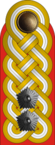 OF-8 Generalleutnant.png