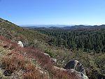 拉古纳山附近的克利夫兰国家森林