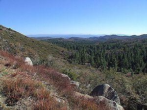 Mountlagunasmall.jpg