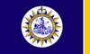 纳什维尔旗帜