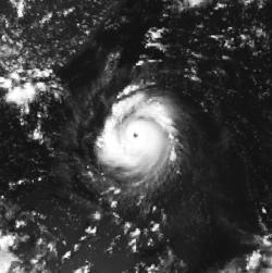 超强台风爱伦