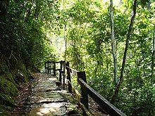 Parque Nacional Guatopo Guárico.jpg