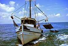 Photo of boat moving forward at sea. On each side, the boat has one pole pointing away from boat with nets attached