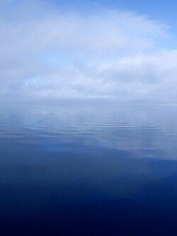 St Johns Fog.jpg