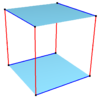 Isogonal skew octagon on cube.png