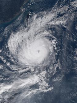巨爵在10月17日打开风眼, 迈向强度巅峰,其风眼显而易见。