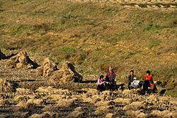 1235 - Nordkorea 2015 - von Pjöngjang nach Kangso (22351700793).jpg