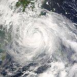 Typhoon Dujuan 2003.jpg