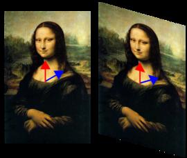 在这个错切变换中,蒙娜丽莎的图像被变形,但是垂直的红色向量在变换下保持不变,而蓝色的向量,从胸部到肩膀,其方向改变了。因此红色向量是该变换的一个特征向量,而蓝色的不是。红色向量长度不变,特征值为1。所有沿着垂直线的向量也都是特征向量,它们的特征值相等。它们构成这个特征值的特征空间。