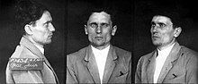 a series of three black and white head and shoulders photographs