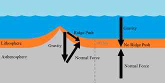 This image shows a mid-ocean ridge in cross-section. The material nearest the ridge (less than 90 million years old) experiences gravity and an angled normal force, resulting in a net force down and away from the ridge. Material older than 90 million years experiences gravity and an equal but directly opposite normal force, producing no ridge push.