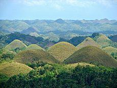 Chocolate Hills overview.JPG