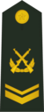 PLAGF-0705-SSG.png