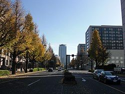 图片左侧为永田町一丁目,右侧为永田町二丁目(参议院通用门前交差点)