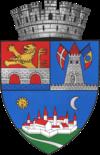 蒂米什瓦拉徽章
