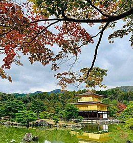 衬托著红色秋枫的金阁寺主要建物,舍利殿