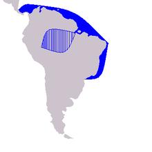 Range map Sotalia genus (S. fluviatilis and S. guianensis).png