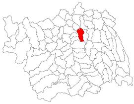 Location in Bacău County