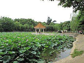 Heping, Heyuan, Guangdong, China - panoramio.jpg