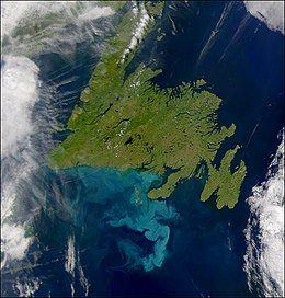 Newfoundland OSE2002210.jpg