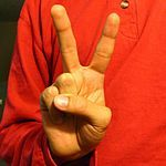 ASL sign for the number 2