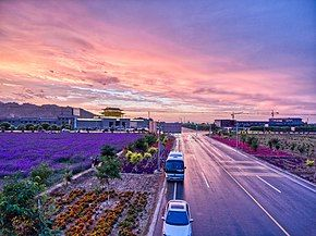 Lavender and afterglow in zhangye.jpg