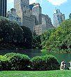Central park scenery
