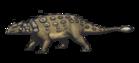 Ankylosaurus magniventris