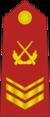 CAPF-0707-3CSGT.png