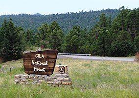 Gila Natl Forest Nima1.JPG