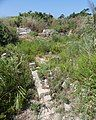 PhoenicianShrine AlMinaCitySite TyreLebanon RomanDeckert23082019.jpg