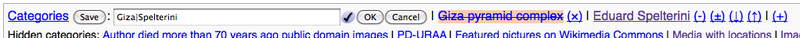 """In multi-change mode, changes are reflected on the page view, but are saved only when the """"save"""" button is clicked."""