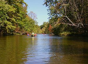 Pere Marquette River in Autumn Manistee National Forest.JPG