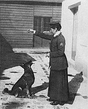 A sepia photograph taken outdoors of a woman wearing a military-style coat and long skirt training a German shepherd dog with treats