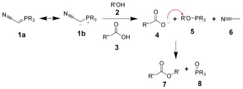 The mechanism of the phosphorane variant of the Mitsunobu reaction