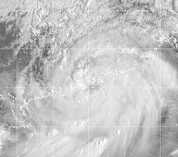 强热带风暴約克