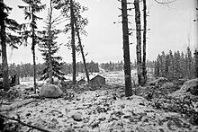 A ground-level photo at Kollaa, with trees in the foreground, a snowy field in-between and dense forests as well as a Soviet tank in the distance.