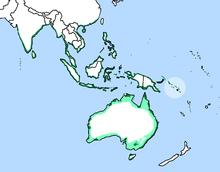 Haliaeetus leucogaster distr.png
