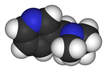 Nicotine-3D-vdW.png
