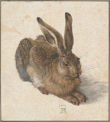 Painting of a hare by Albrecht Dürer