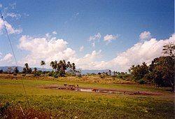 East of Lospalos